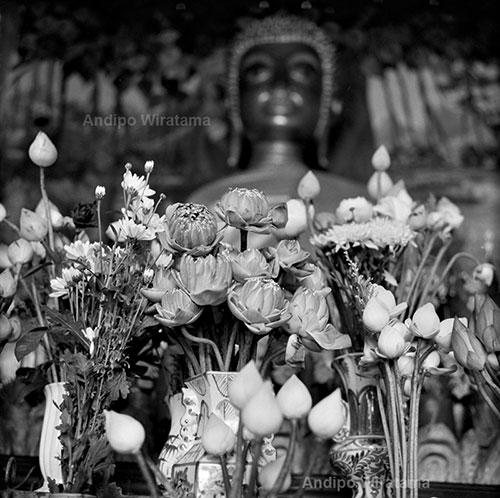 kuil buddha di vientiane